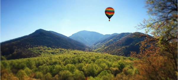 Picture of a hot air balloom over a leafy valley